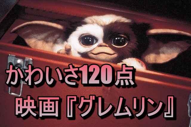 ギズモが可愛すぎる:映画『グレムリン』評価&感想レビュー